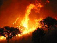Incendii de vegetație în vestul Spaniei