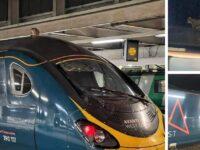 O pisică încăpățânată a ținut pe loc un tren, într-o gară din Londra