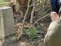Un fermier belgian a mutat accidental, cu doi metri, granița cu Franța