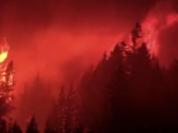 Incendii de vegetație în vestul Canadei. Provincia Columbia Britanică a decretat starea de urgenţă